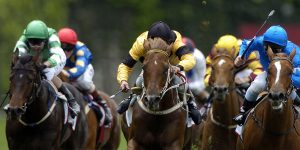 Free Horse Racing Tips Daily